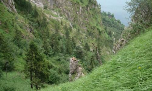 Zdjęcie AUSTRIA / Alpy Salzburskie / Gmunden / Co ty tutaj robisz?!