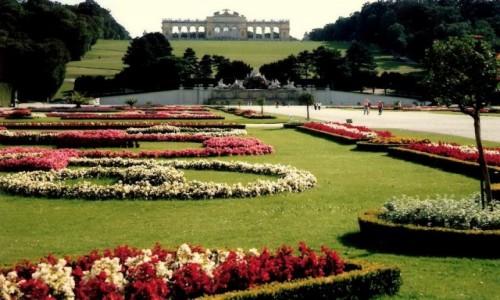 Zdjęcie AUSTRIA / Park Schonbrunn / Wiedeń / Glorieta