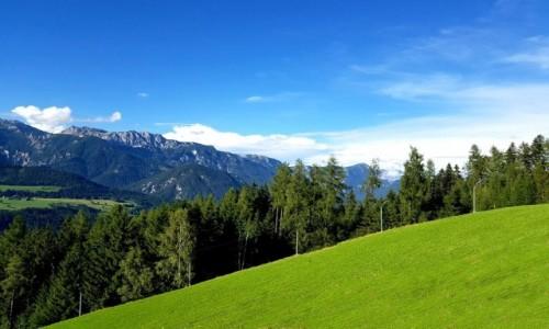 Zdjęcie AUSTRIA / kraj związkowy Styria / Schladming / Jeden z wielu stoków narciarskich.