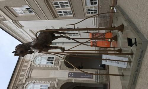 Zdjecie AUSTRIA / Salzburg / Salzburg / Rzeźba Konia Salzburg