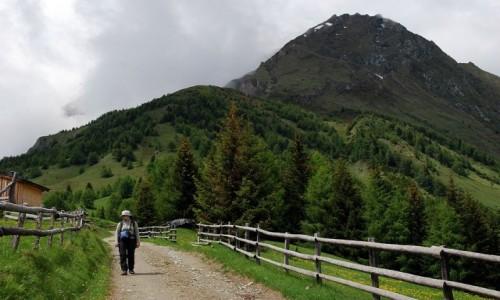 Zdjecie AUSTRIA / Osttirol / Hintereggkogel / Hintereggkogel