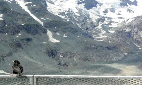 Zdjecie AUSTRIA / Kraj Salzburski / Wysokie Taury / Alpejskie widoki