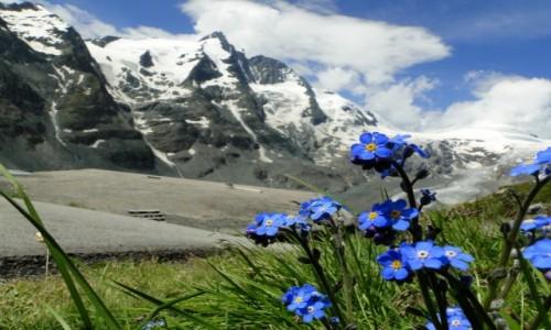 Zdjecie AUSTRIA / Karyntia / Wysokie Taury / Alpejskie widoki