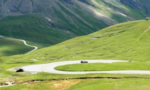 Zdjecie AUSTRIA / Kraj Salzburski / Park Narodowy Wysokie Taury / Alpejskie lato