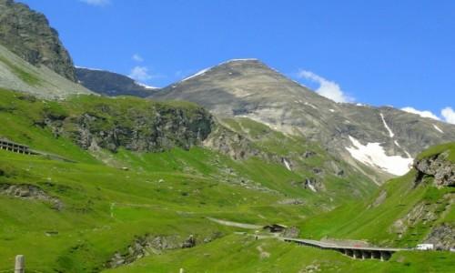 Zdjecie AUSTRIA / Karyntia / Park Narodowy Wysokie Taury / Alpejskie lato