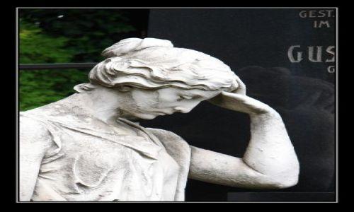 Zdjecie AUSTRIA / Wiedeń / Cmentarz Grinzing / wspomnienia .....