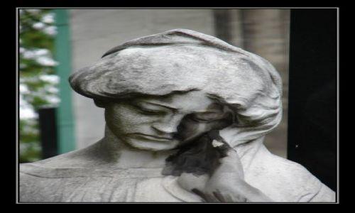 Zdjecie AUSTRIA / Wiedeń / Cmentarz Grinzing / wspomnienia ...