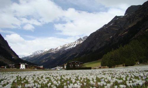 Zdjecie AUSTRIA / Tyrol / Dolina Pitztal / wiosna