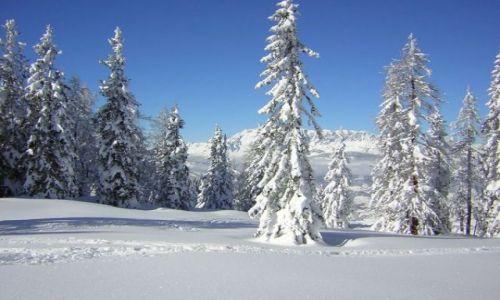 Zdjęcie AUSTRIA / Austria / Austria / w krainie śniegu...