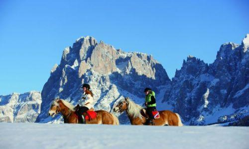 Zdjecie AUSTRIA / Południowy Tyrol / brak / Tyrol Południowy