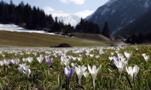 Zdjecie AUSTRIA / Tyrol  / Dolina Pitztal,  / KONKURS