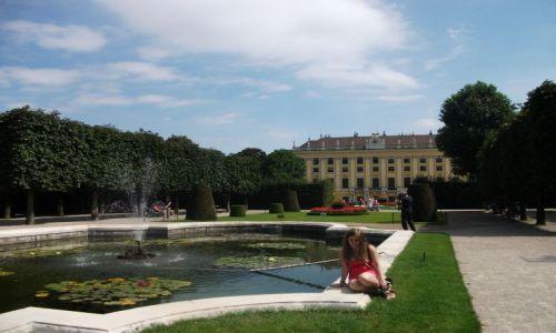 Zdjecie AUSTRIA / - / Vienna / Schonbrunn Palace Gardens