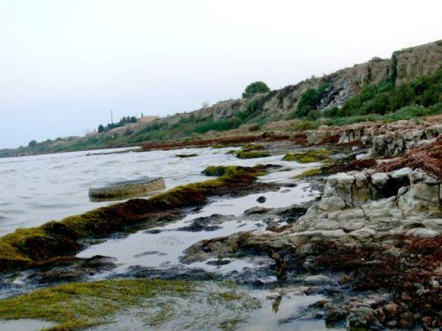 Zdjęcia: Qobustan, Wybrzeże Morza Kaspijskiego, Ekologia uber alles II!, AZERBEJDżAN
