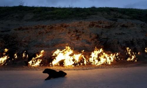 Zdjęcie AZERBEJDżAN / Baku / Yanardagh / Płonący wydobywający się spod ziemi gaz