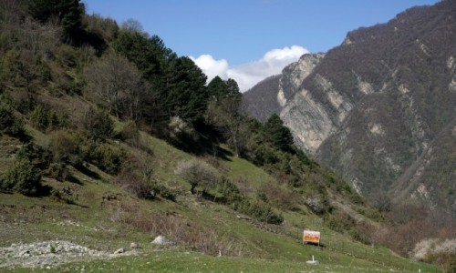 Zdjęcie AZERBEJDżAN / Szeki / Qax / Krajobraz kaukaskiej doliny
