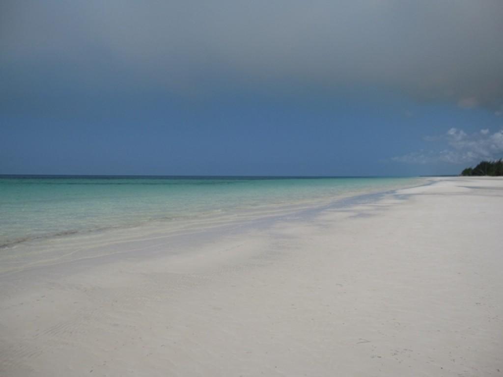 Zdjęcia: grand bahama, BAHAMY dzika plaża grand bahama, piękna!, BAHAMY
