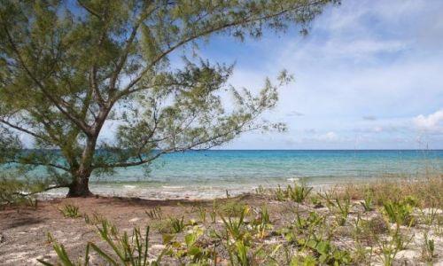 BAHAMY / brak / Eleuthera Island / Krajobraz