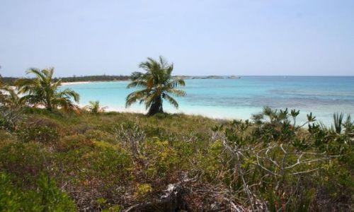 BAHAMY / brak / Eleuthera Island / Morze Karaibskie