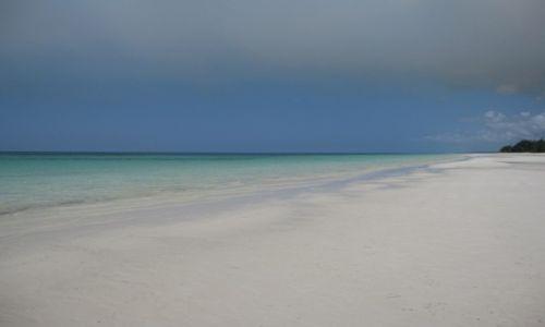 Zdjecie BAHAMY / - / grand bahama / BAHAMY dzika plaża grand bahama, piękna!