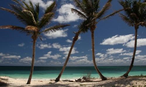 Zdjecie BAHAMY / Grand Bahama / Lucaya Beach / Karaibskie klimaty