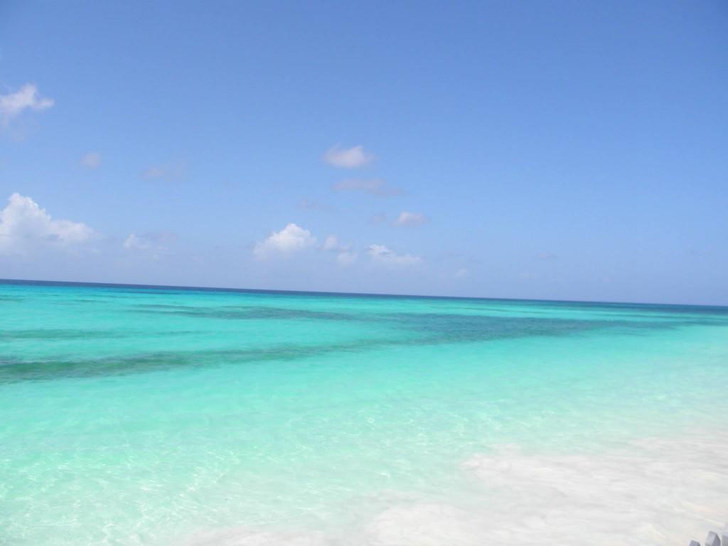 Zdjęcia: dover beach, -christ church, paradise, BARBADOS