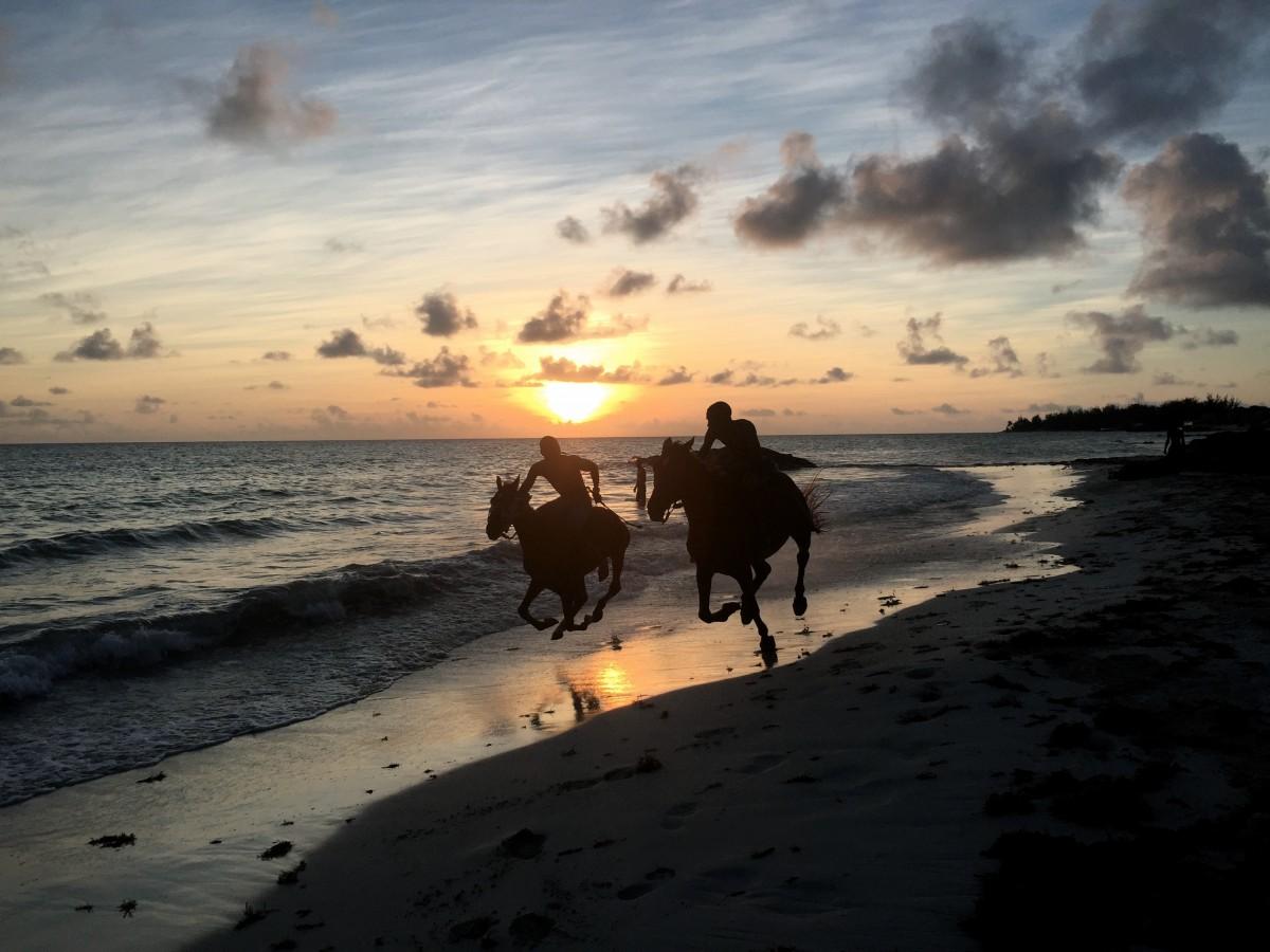 Zdjęcia: Oistins, Karaiby, riders, BARBADOS