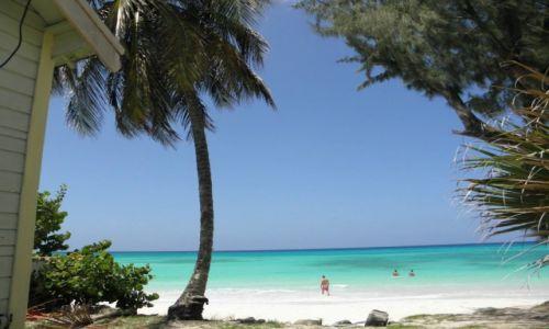 Zdjecie BARBADOS / - / dover beach / trip