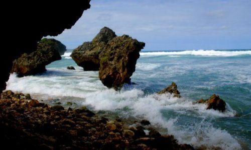 Zdjęcie BARBADOS / Karaibskie Wyspy / Bathsheba Park / Ostańce