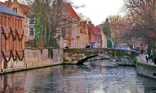 Zdjęcie BELGIA / Flandria / Brugia / Kanałw Brugii zimą