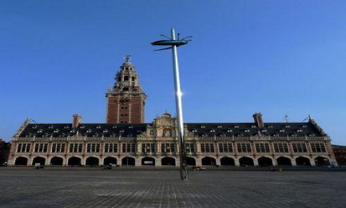 BELGIA / Brabancja Flamandzka / Leuven / W Leuven tak kończą robaki!