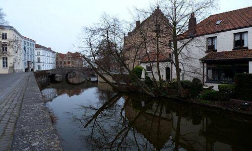 Zdjęcie BELGIA / Flandria Zachodnia / Brugia / Brugijskie kanały