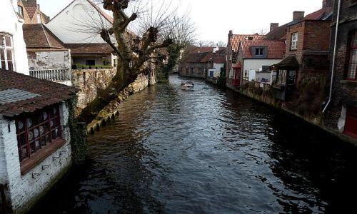 Zdjęcie BELGIA / Flandria Zachodnia / Brugia / Brugijskie kanały 2