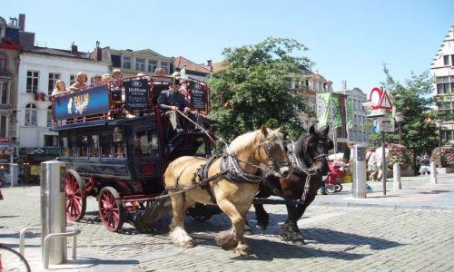 Zdjecie BELGIA / Polnocna Belgia / miasto Antwerpia / Antwerpia
