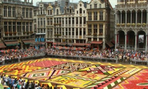 Zdjęcie BELGIA / Bruxelles-Capitale / Bruksela / Flower carpet