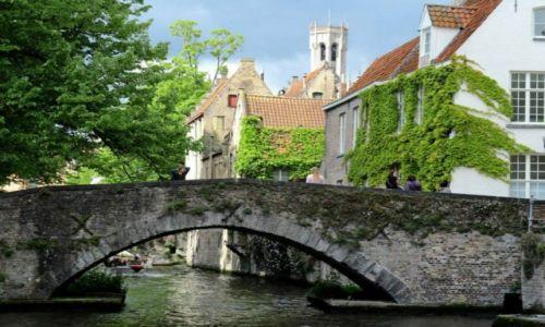 Zdjęcie BELGIA / Belgia / Brugia / Brugia - Wenecja Północy
