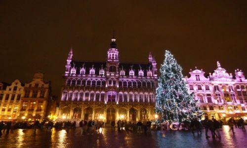 Zdjęcie BELGIA / Bruksela / Bruksela / Bruksela nocą (2)