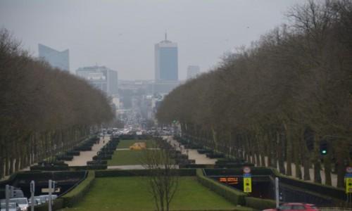 Zdjecie BELGIA / Stolica / Bruksela / Widok spod Bazy