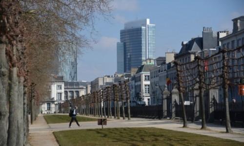Zdjecie BELGIA / Stolica / Bruksela / Park Brukselski