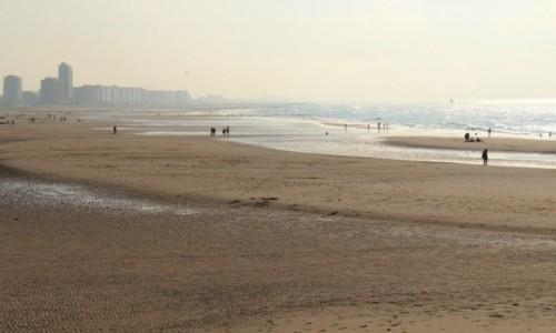 Zdjecie BELGIA / Flamandzki / Ostenda / Na plazy