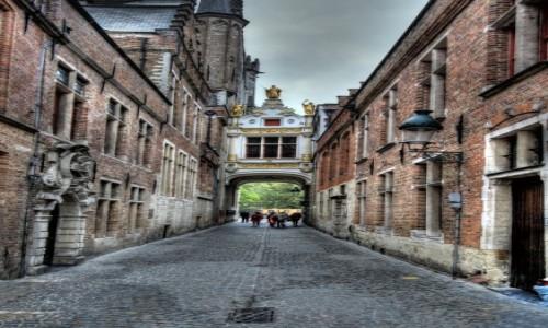 Zdjecie BELGIA / Flandria Zachodnia / Brugia / Brugia#7