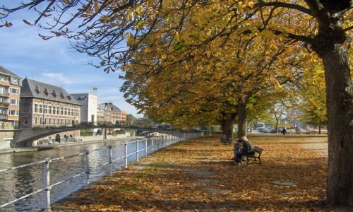 Zdjecie BELGIA / Walonia / Namur / Namurt w kolroach jesieni