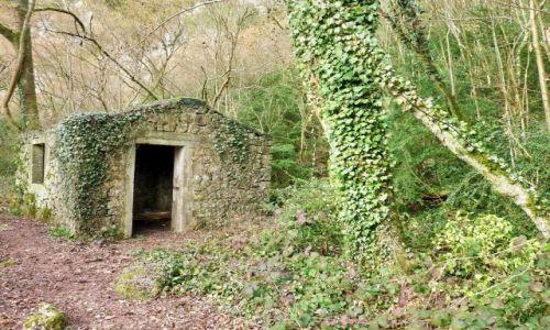 Zdjęcie BELGIA / Namur / Ardeny / Hastiere / Domek w lesie