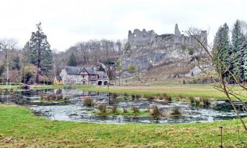 Zdjęcie BELGIA / Namur / Ardeny / Falaen / Zamek w Falae
