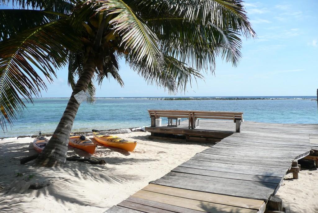 Zdjęcia: Wielka Rafa Belize, Tobacco Caye, widok na rafę, BELIZE