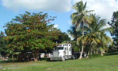 BELIZE / - / okolice Orange Walk / Parking przed domem
