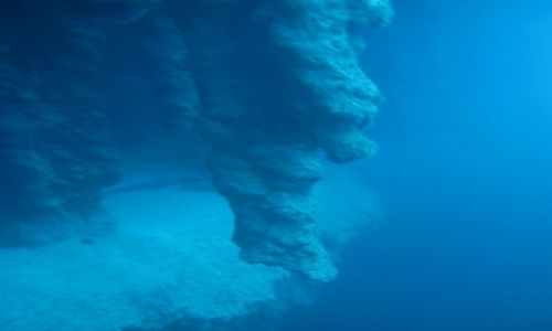 Zdjęcie BELIZE / - / morze karaibskie / BELIZE  stalaktyty w blue hole