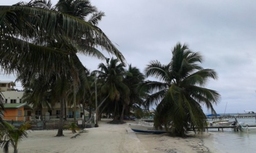 Zdjecie BELIZE / - / Caye Caulker / Caye Caulker leząca 32km od Belize Cite