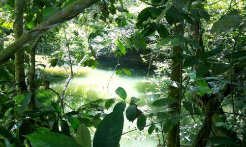 BELIZE / brak / gdzies w Belize / w dzungli