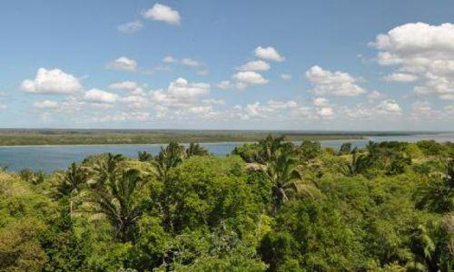 BELIZE / Orange Walk / Lamanai / Lasy tropikalne Belize
