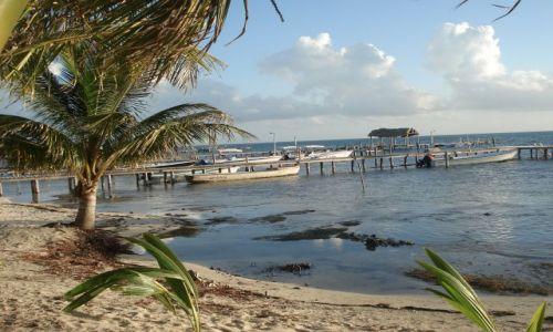 Zdjęcie BELIZE / caye caulker / wyspa / belize